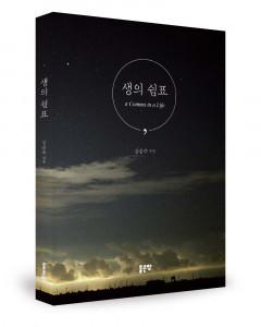 강승수 지음, 204쪽, 1만3000원