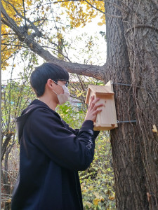 녹색교육센터 숲틈 7차시 '동네숲 새친구 지킴이-인공둥지 달기' 활동
