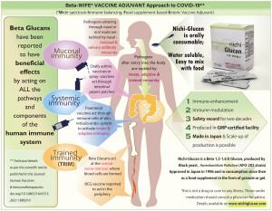 니치 글루칸은 네 가지 면역 체계, 즉 점막 면역, 적응 면역, 선천 면역 및 훈련 된 면역의 모든 경로를 통해 작용할 가능성이 있는 것으로 보고됐다. 새로운 베타 글루칸에 대한 연구는 현재의 Covid-19, 돌연변이 변종 및 미래의 전염병을 염두에 두고 인간 면역력...
