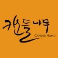 캔들나무 Logo
