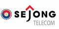 세종텔레콤 Logo