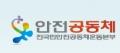 전국민안전공동체운동본부 Logo