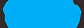토큰스카이 조직위원회 Logo