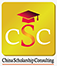CSC컨설팅 Logo