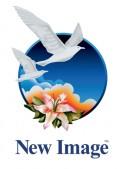 New Image Group Logo