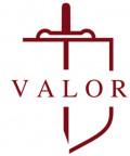 베일러국제학교 Logo