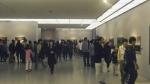 내셔널 지오그래픽展 '수능생 특별 이벤트' 실시