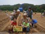 샘표 유기농 콩농장 파종식에 참여한 가족이 콩을 심으며 즐거운 시간을 보내고 있다
