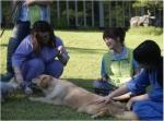 힐리언스 선마을, 반려동물과의 교감을 통한 다양한 치유활동 나서