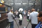 영국 런던에서 청두 판다 베이스가 제작한 '오빤 판다스타일' 패러디 영상 장면