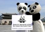 한국 지원자, 글로벌 판다 홍보대사 선발대회 준결승 진출