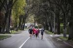 뉴질랜드 여행자들이 가장 선호하는 여행지인 마운트 쿡 국립공원과 퀸스타운에서는 올해 처음으로 마라톤 대회를 개최한다.