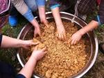힐리언스 발효푸드 디톡스 캠프가 9월 11일과 12일 진행된다
