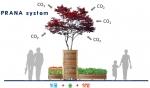 가든프로젝트 고유브랜드 프라나 시리즈(숲, 빗물, 텃밭)