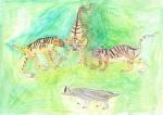제 4회 한-러 어린이 호랑이 그리기 대회 최우수작품