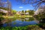CNN에서 소개한 한국의 비경, 보문정. 경주보문관광단지 내에 자리하고 있지만 호수 산책로 쪽이 아닌 반대편에 있어 지나칠 수도 있다. 정자를 둘러싼 벚나무와 그를 비추는 연못을