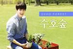 EXO 수호의 27번째 생일을 기념하는 EXO 수호숲2호가 서울로7017의 스타나무 길에 조성된다