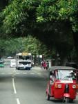 스리랑카 거리 풍경