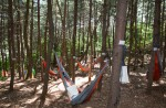 국립중앙청소년수련원 2018 NYC문화예술축제 참가자들이 숲에서 문학로드 프로그램을 체험하고 있다