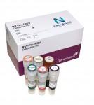 네오플렉스 RV-Flu/RSV
