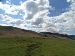 몽골 초원