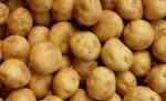 야라 감자 상품성 차별화를 위한 기비 프로그램 제공