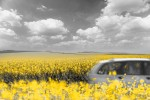허츠가 봄맞이 미국, 캐나다, 유럽 최대 20% 추가할인 프로모션을 진행한다