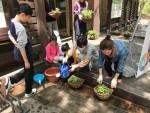 서울숲학교 초보자를 위한 가드닝워크샵 프로그램 참여자들이 행잉화분을 만들고 있다