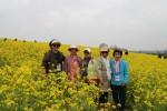 삼전종합사회복지관이 진행한 봄 나들이 행사에서 참여 어르신들이 유채꽃과 기념촬영을 하고 있다