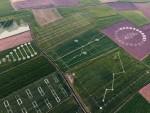 야라와 IBM은 디지털팜 플랫폼을 통해 AI, 머신러닝, 현장 데이터를 적용하여 농부들에게 새로운 통찰력을 제공할 계획이다.