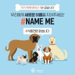 동물보호단체 휴메인 소사이어티 인터내셔널이 식용견에 새로운 이름 선물하는 #NameMe 캠페인을 진행한다