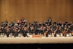 2018년 서울생활예술오케스트라축제 공연