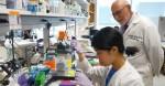 메리케이재단은 UT 사우스웨스턴의 세포 생물학 교수이자 메리케이재단의 명예 석좌교수 제리 W 셰이 박사와의 확고한 협업을 통해 오랫동안 UT 사우스웨스턴과 협력관계를 유지하고 있다