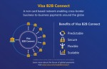 비자 B2B 커넥트