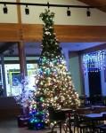 담양곤충박물관 크리스마스 트리