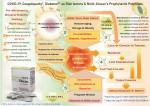 혈당, 콜레스테롤 및 응고 시스템 균형을 통한 코로나19 관련 합병증 예방 가능성에 대한 AFO-202 분비 니치 글루칸의 두드러진 특징