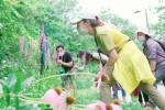 8월 낙산공원의 곤충을 주제로 진행된 우리 마을 보.물 탐사자 활동