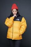 1996 에코 눕시 재킷을 착용한 노스페이스 홍보대사 신민아