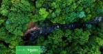 슈나이더 일렉트릭이 생물 다양성 보호를 위한 대책 공약 발표로 ESG 경영을 지속한다