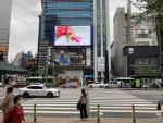 광동 여지 관련 영상이 서울의 한 대형 스크린에서 재생되고 있다