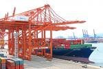 7000TEU급 컨테이너선 'HMM 자카르타(Jakarta)호'가 부산항 신항 HPNT에서 국내 수출기업들의 화물을 싣고 있다