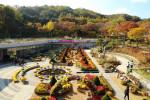 신구대학교식물원 가을 중앙광장