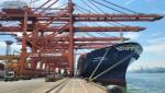 5000TEU급 컨테이너선 'HMM 플래티넘(Platinum)호'가 부산신항 HPNT에서 국내 수출기업들의 화물을 싣고 있다