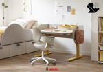 2021 IDEA 디자인 어워드' 가구·조명(Furniture & Lighting) 부문에서 금상을 수상한 일룸 '제롬 모션데스크'