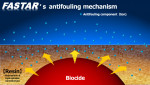 니폰 페인트 마린, 새로 개발한 방오도료 'FASTAR'로 친환경 행보