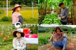 컨비니가 농진청과 함께 강소농 온라인 기획전을 개최한다