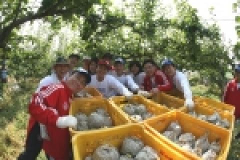 푸르덴셜 직원들이 배따기 일솝돕기 자원봉사를 마치고 기념촬영한 모습