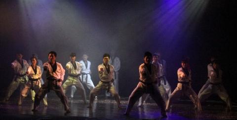 20130525 베트남_하노이 공연