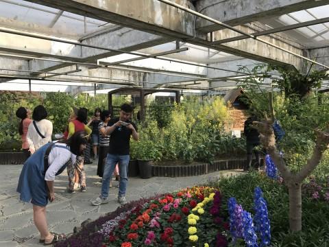 다양한 식물을 함께 즐길 수 있는 서울숲나비정원