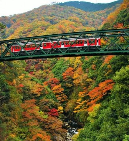 세계적인 단풍 명소로 유명한 일본 하코네